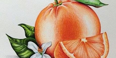 Art After Dinner Workshop: Colored Pencil Orange tickets