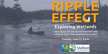 Ripple Effect: Exploring Wetlands tickets