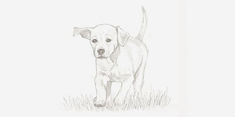 60min Animal Pencil Sketching Art Lesson - Running Dog! @3PM (Ages 6+) tickets