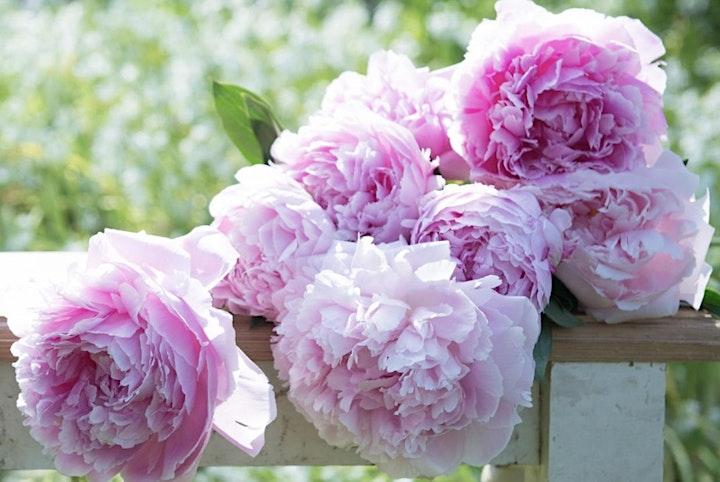 DIY floral workshop: Peonies & Prosecco image