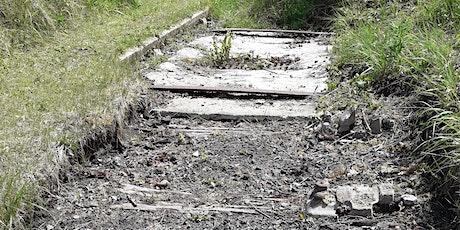 Railway legacy to  wildflower haven 2pm walk tickets