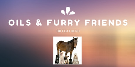 Using Essential Oils safely with your furry friends webinar tickets