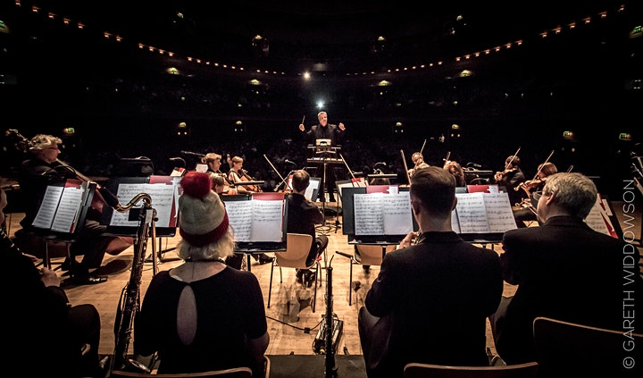'The Snowman' film with live orchestra - Liverpool Cathedral image