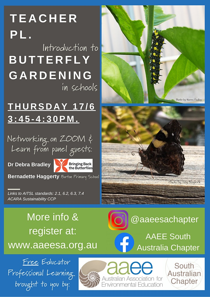Introduction to Butterfly Gardening: PL for Educators on ZOOM image