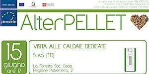 AlterPELLET - Visita alle caldaie dedicate