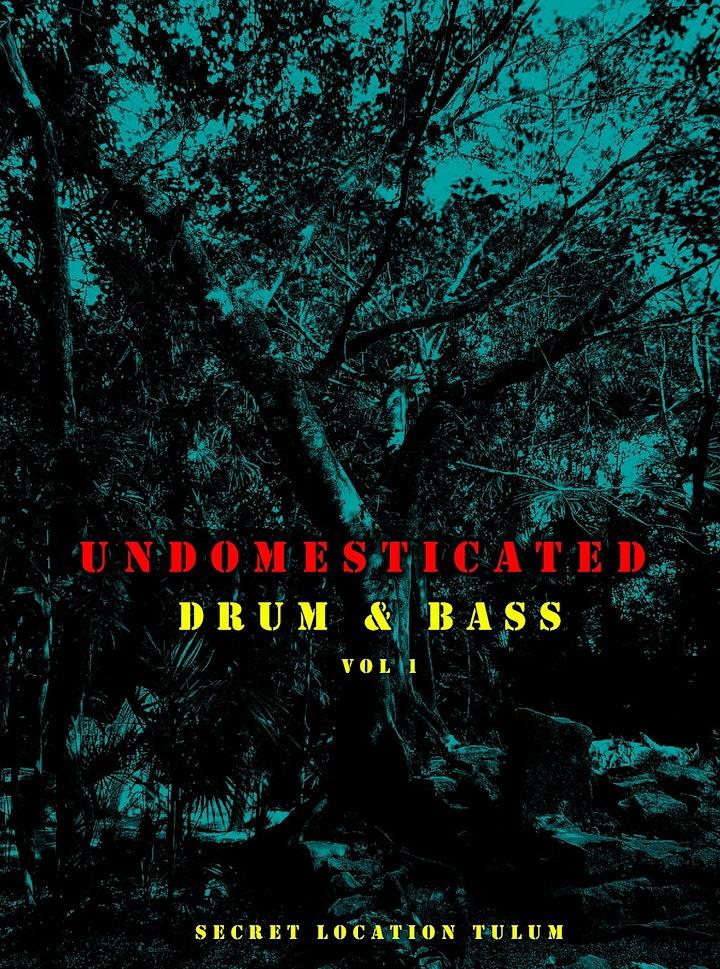 Imagen de UNDOMESTICATED Drum & Bass Vol 1