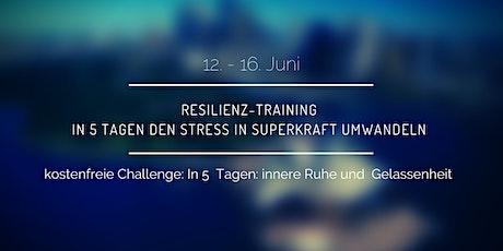 Resilienz-Training: In 5 Tagen den Stress in Superkraft umwandeln Tickets