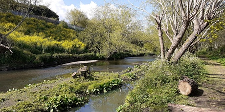 Guided Eel Riverbank Walk (Brent Valley Park, Ealing) tickets
