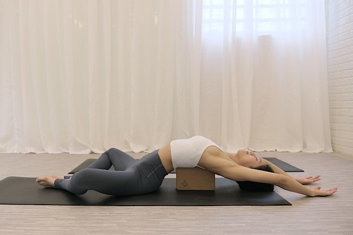 Yoga Therapy for Pain Management Workshop image