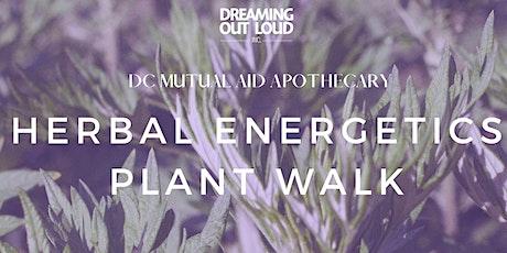 Herbal Energetics Plant Walk tickets