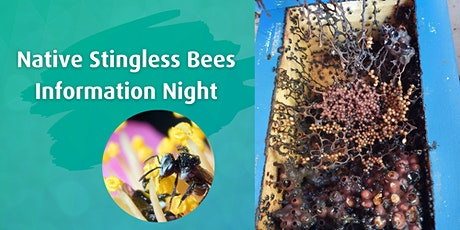 Seniors Month I Native Stingless Bees Information Night tickets