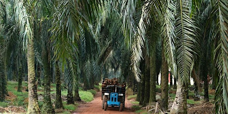 Roundtable on Sustainable Palm Oil (RSPO) Supply Chain Awareness Course tickets