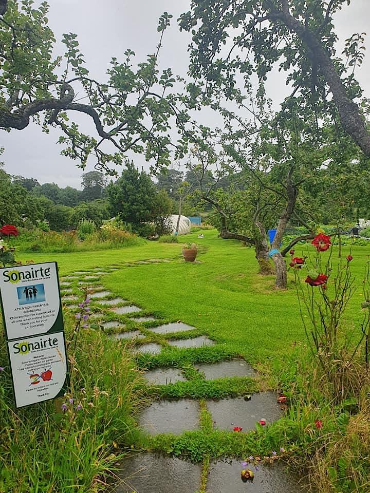 Seed to Plate: 4 Week Organic Gardening Course image