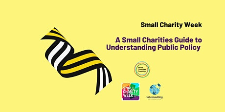 SCW:  A Small Charity's Guide to Understanding Public Policy tickets