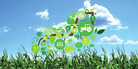 Cómo el Internet de las cosas ha revolucionado la agricultura entradas