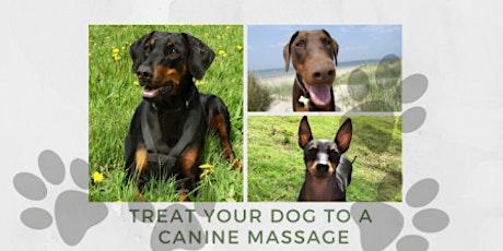 Canine Massage Workshop tickets