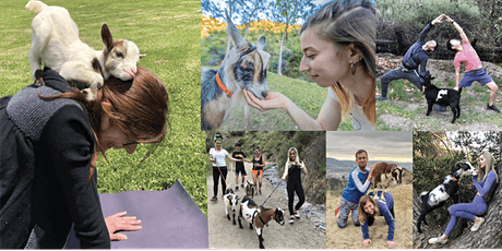 Goat Yoga Hike tickets