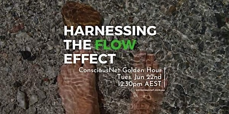 ConsciousNet: Harnessing The Flow Effect tickets
