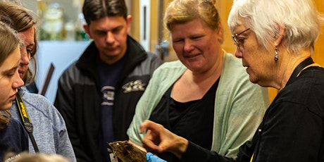 Audio described tour: Wonders from the South Australian Museum (1pm) tickets