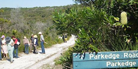 Noosa National Park Wildflower Walk tickets