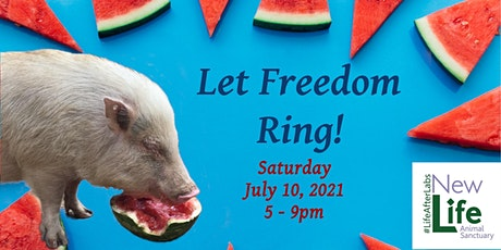 Let Freedom Ring tickets