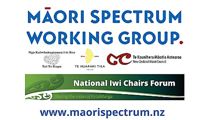 Piki ake, Kake ake. National Māori Spectrum Hui image