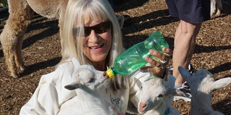 Baby Goat and Bunny Snuggle & Bottle Feed tickets