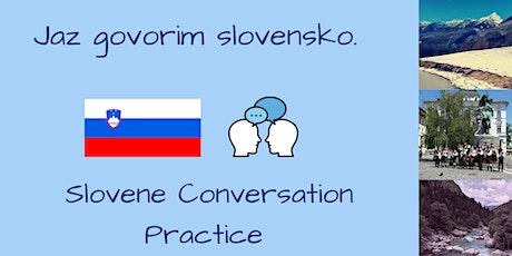 Slovene Conversation Practice - Beginner tickets