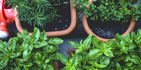 The Culinary Herb Garden tickets
