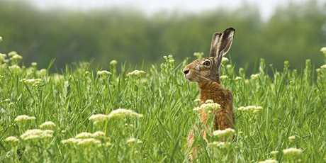 Derbyshire Wildlife Trust's  59th Annual General Meeting tickets
