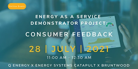 Energy as a Service Demonstrator Project: Consumer Feedback tickets