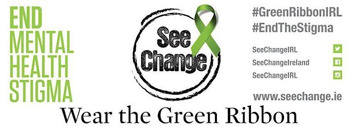 See Change Green Ribbon Virtual Launch  Dublin 2021 image