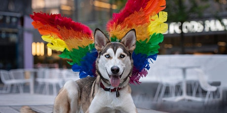 Manhattan West Woof Fest: Paws for Pride tickets