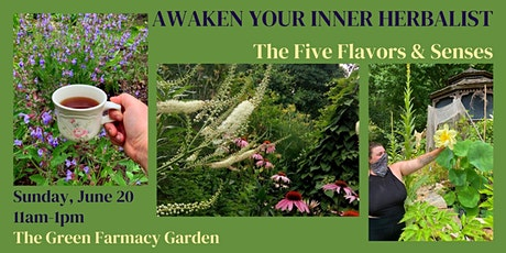 Awaken Your Inner Herbalist: The 5 Flavors and Senses tickets