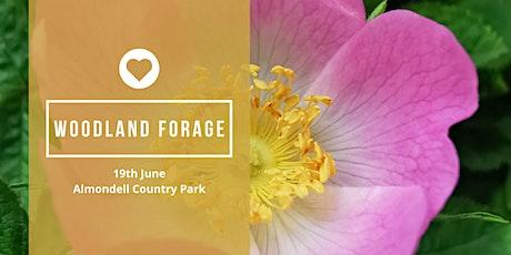 Woodland Foraging Walk - June tickets