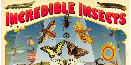 Meet the Curators of Incredible Insects and the Cicada Room tickets