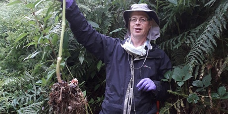 Balsam Removal at Thornton Woods tickets