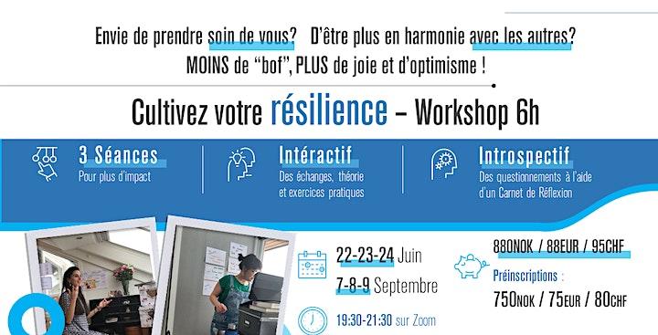 Cultivez votre Résilience - 6h Workshop image