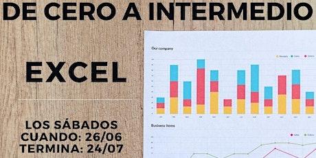 """Curso """" De Cero a Intermedio"""" Excel entradas"""