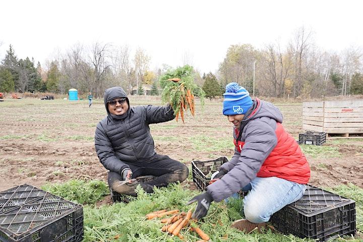 Good Food Project Volunteer Days 2021- Series #1 image