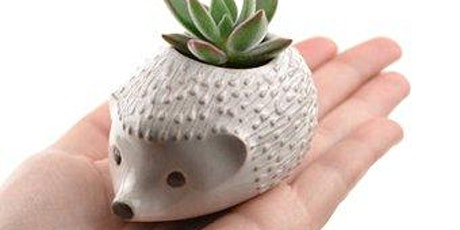 Copy of MAKE YOUR OWN HEDGEHOG PLANT POT - POTTERY CLAY WORKSHOP tickets