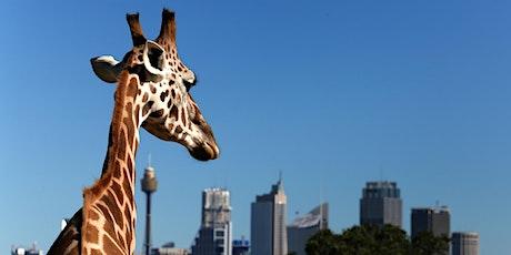 An ADF families event: Taronga Zoo day, Richmond tickets