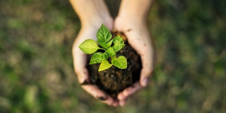 GP/BM Lunch Thursday 17 June - Sustainability tickets
