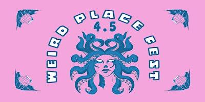 WEIRD PLACE FEST 4.5