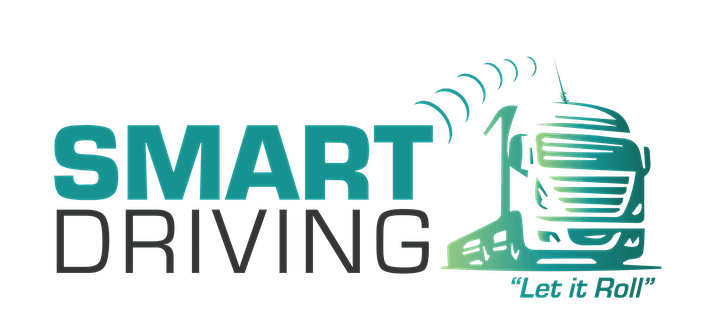 SMART Driving Course - Mayo image