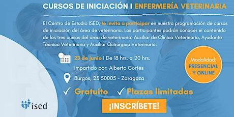 Curso de Iniciación de Enfermería Veterinaria 23_Junio entradas