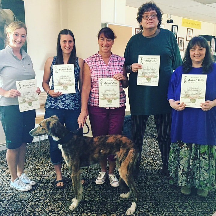 Reiki level 1 course (first degree) including  Animal Reiki 5 Sessions image