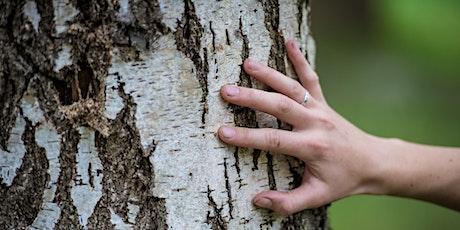 Tree Biology & Identification (Sept '21) tickets