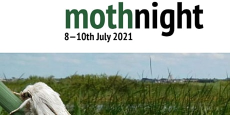 Moth Night (Evening 9th July) tickets