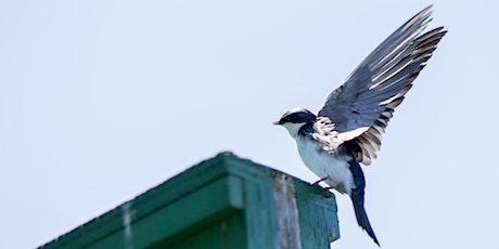 Birding Workshop (Cedar Haven, ON) tickets